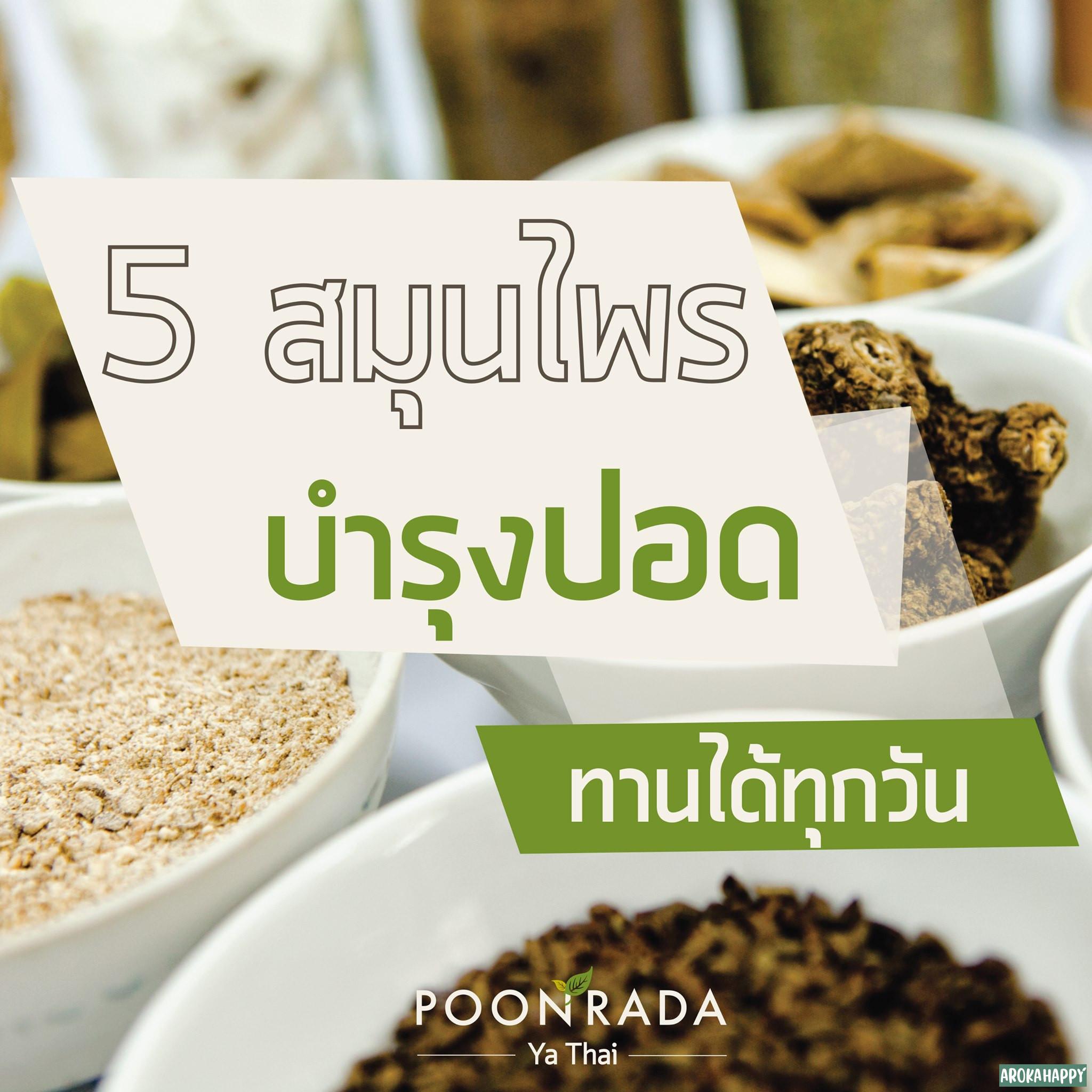 5 สมุนไพรบำรุงปอด ทานได้ทุกวัน